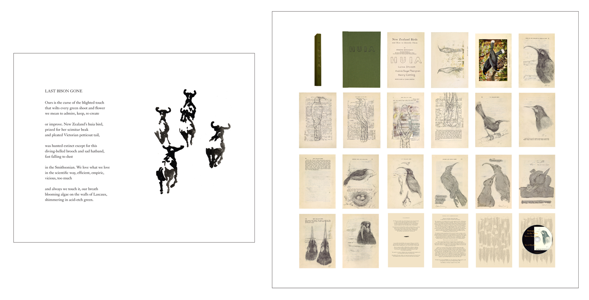 """Last Bison Gone"" and ""Herd"" (2010, framed archival print, 13.5 x 16.5 x 1.5 inches) from  God, Seed: Poetry and Art About the Natural World , a book collaboration with poet Rebecca Foust published by Tebot Bach.   Huia  (2006, altered book, 9.25 x 6.25 x .75 inches) alters a 1925 edition of ""New Zealand Birds and How to Identify Them"" to include drawings of this extinct New Zealand bird by Henry Corning, Andrée Singer Thompson and Lorna Stevens."