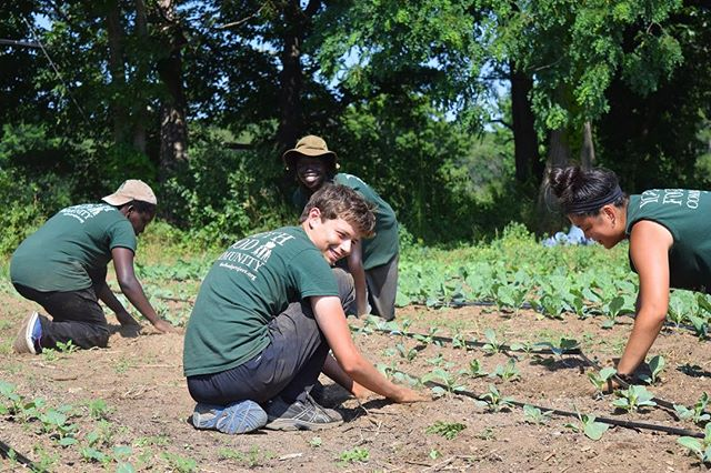 Know any 14-17 year-olds looking to have an unforgettable summer experience? Encourage them to apply to The Food Project's Seed Crew! Seed Crew is an opportunity to make friends, get paid, learn about food and social justice, and have fun. For more information and to apply, visit link in bio.