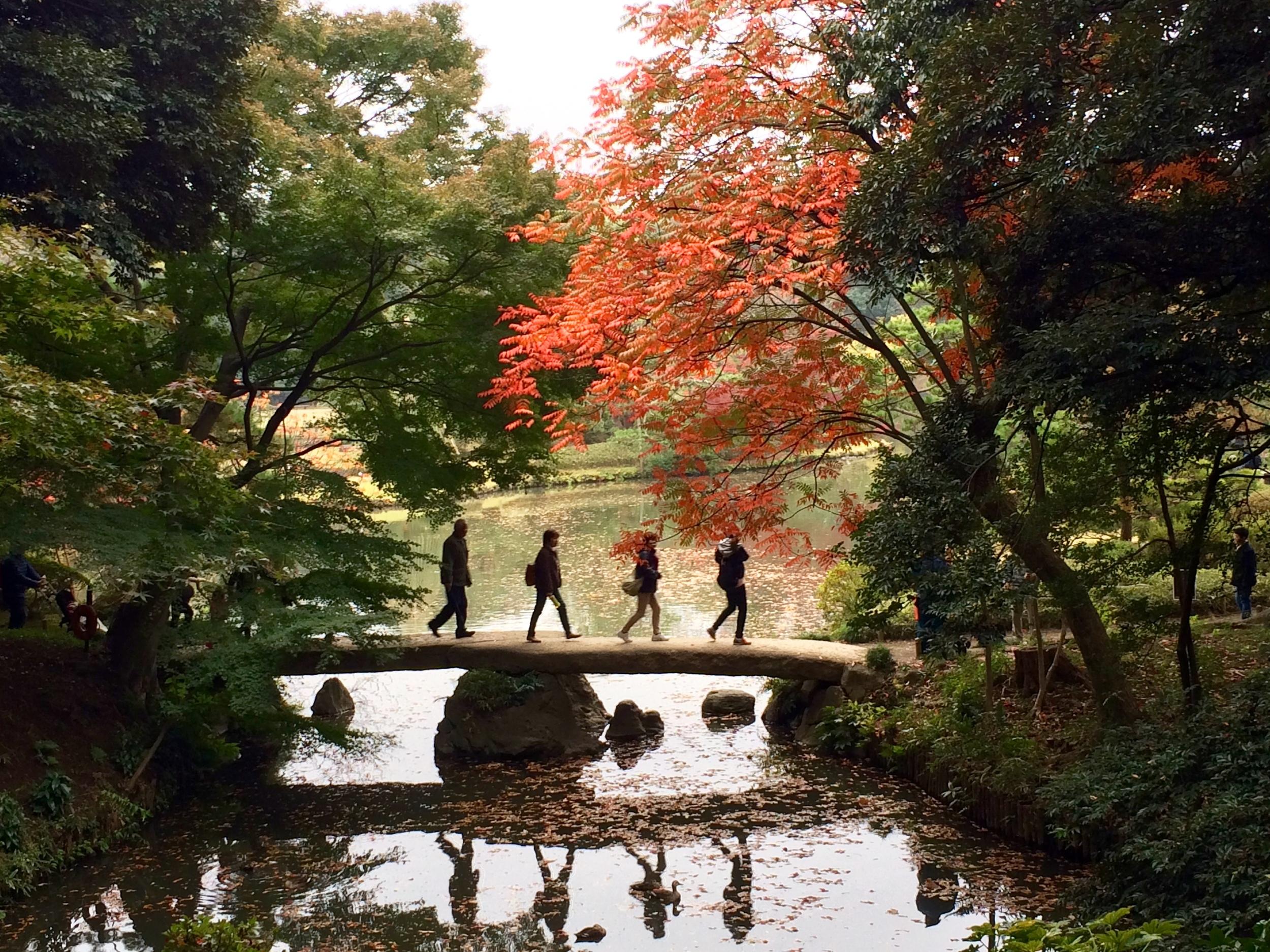 Rikugien Park // Tokyo, Japan