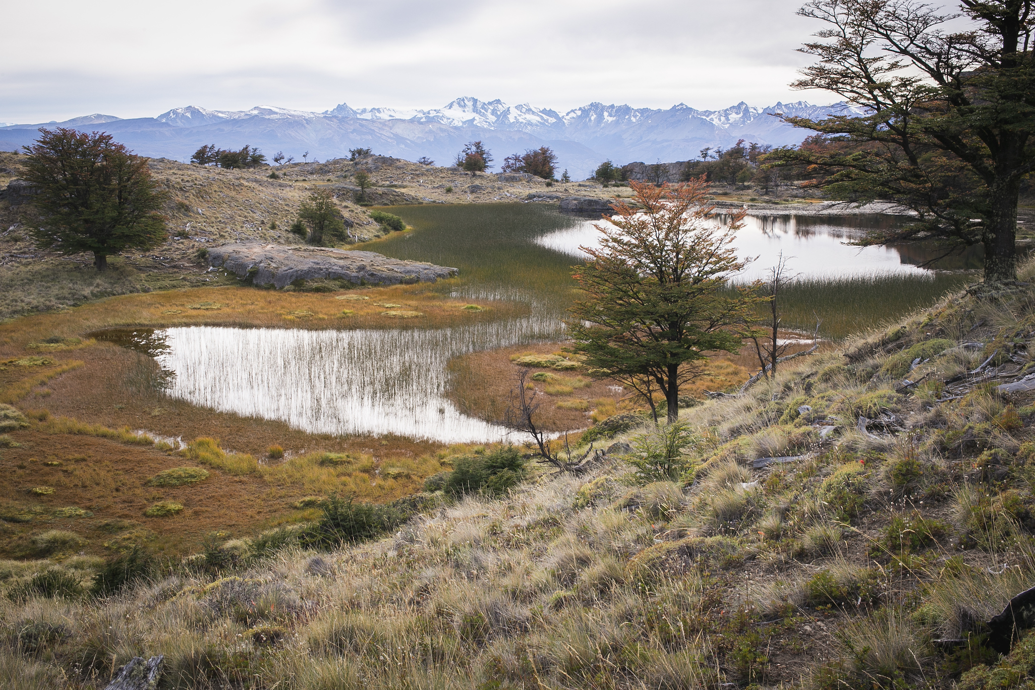 Patagonia2015-21.jpg