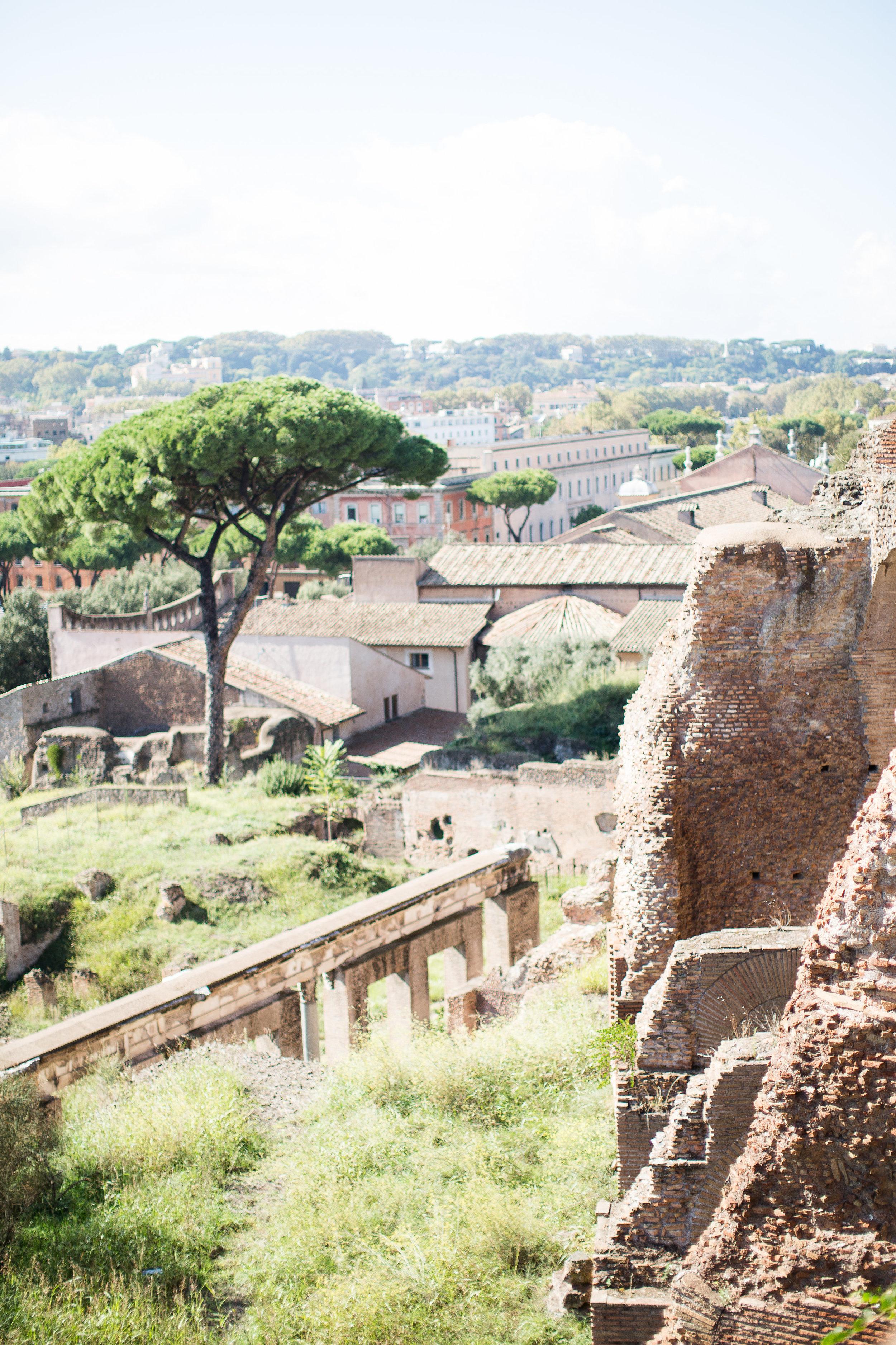 rome2015-138.jpg