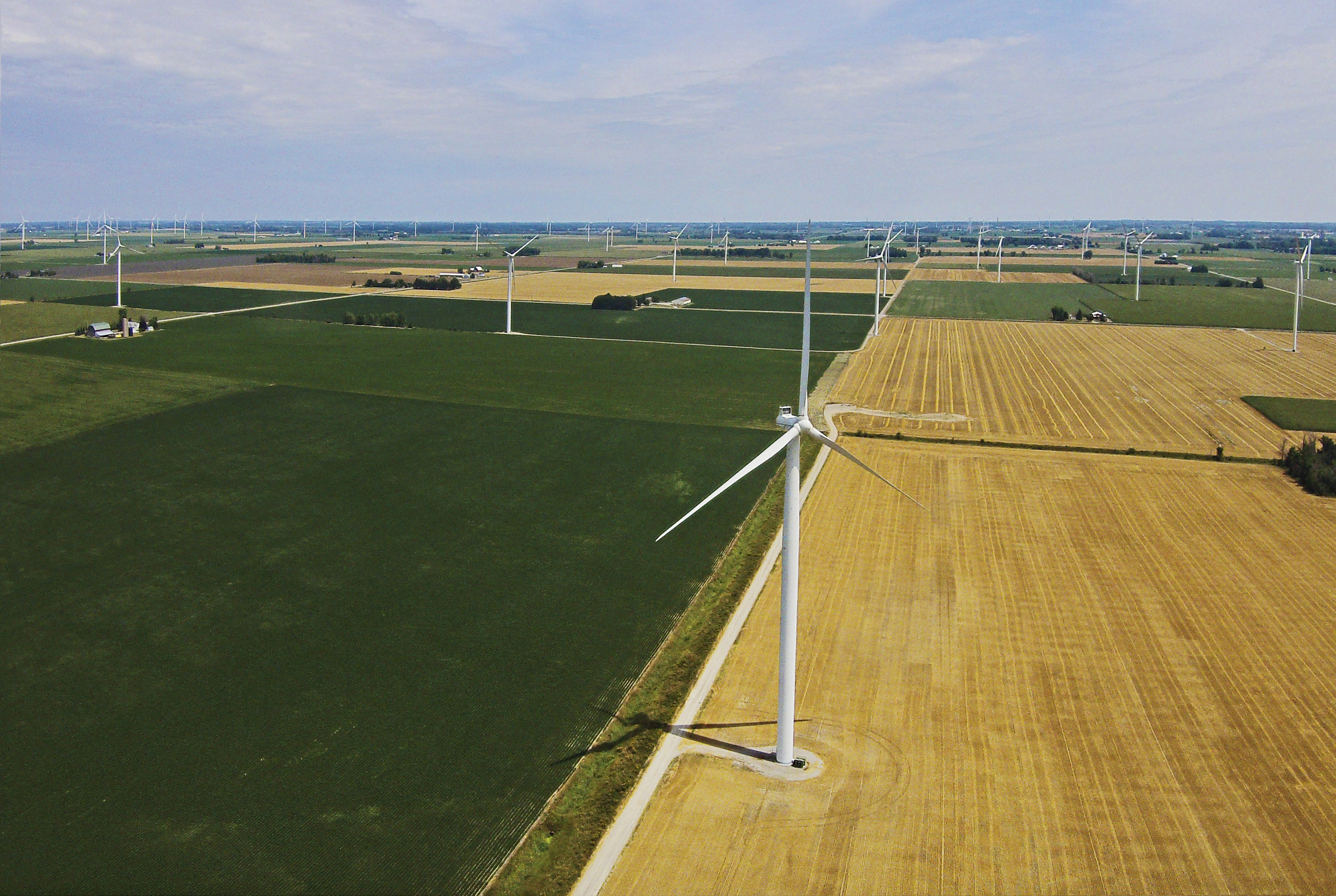 Windmills01.jpg
