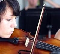 Sue Moxon strings4