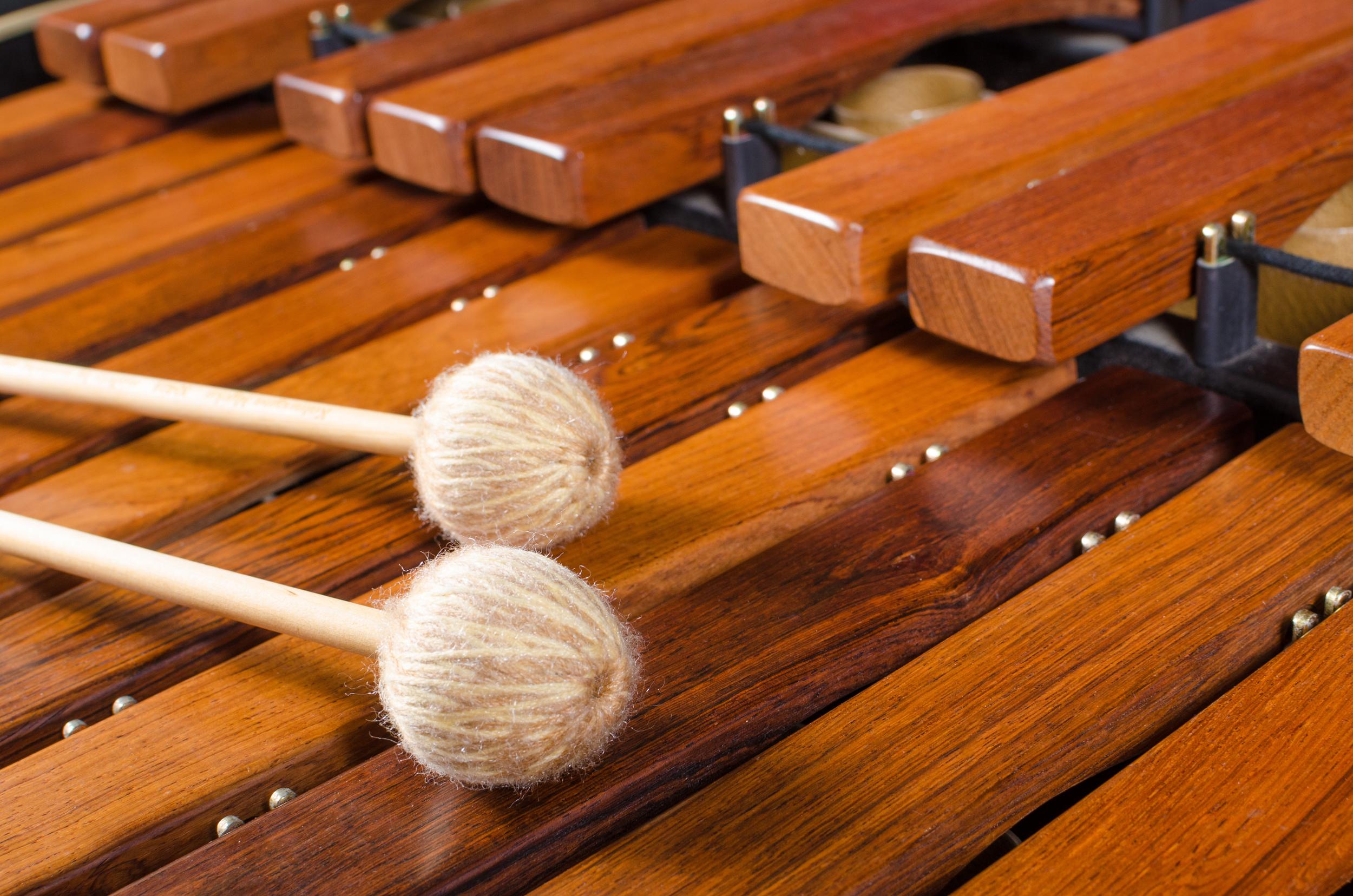 Marimba Levels Sue Moxon