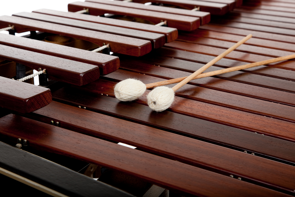 MARIMBA level 1 Sue Moxon