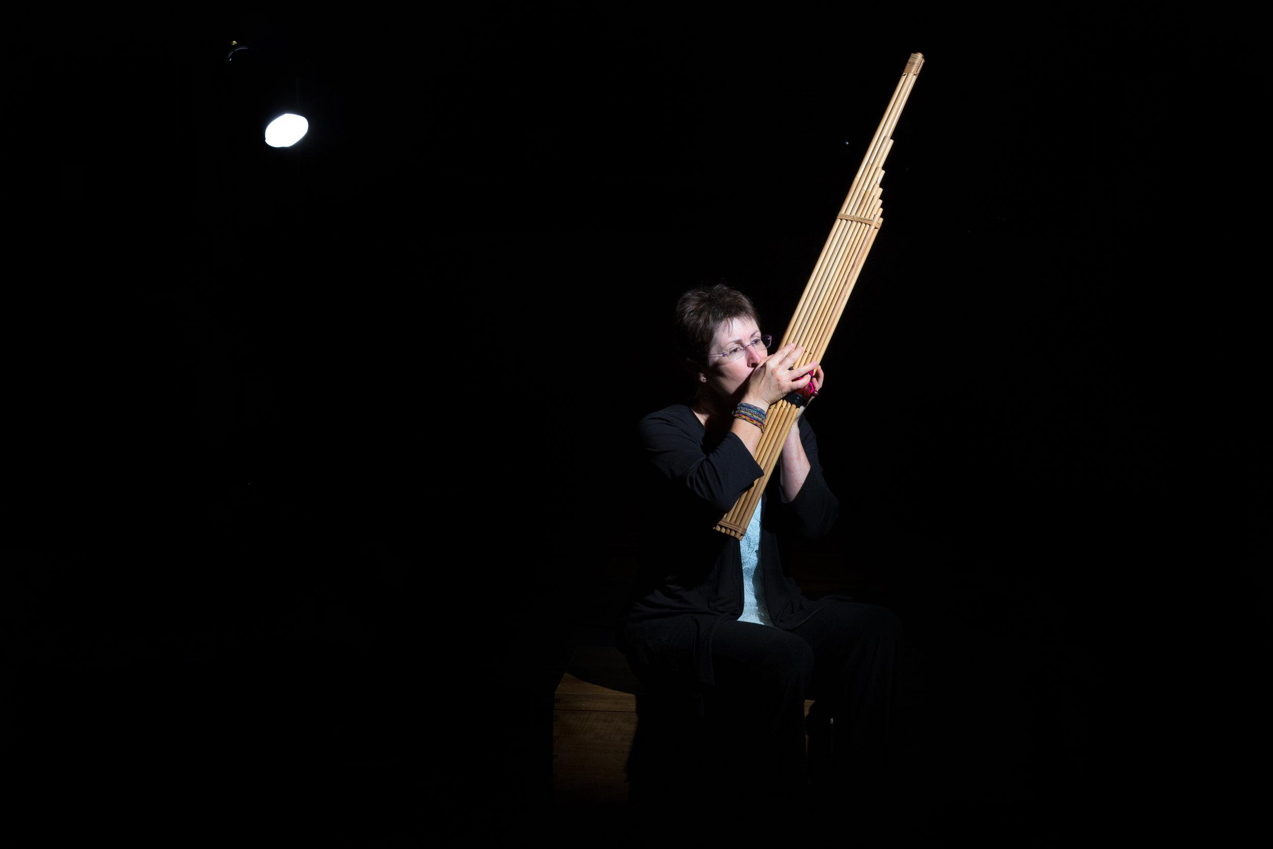 sue moxon multi-instrumentalist