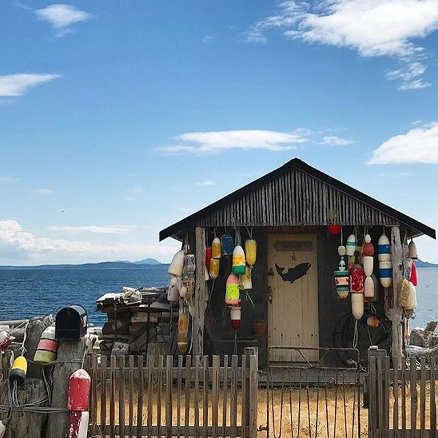 Vacation day dreaming.... . . . #lummiisland #color #woodenhouse #beachhouse