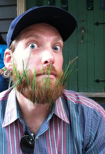 8. Grass? What grass?