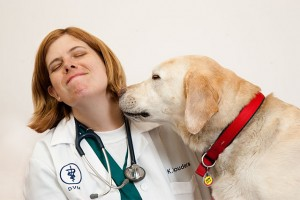homefront veterinary wellness exam for pets