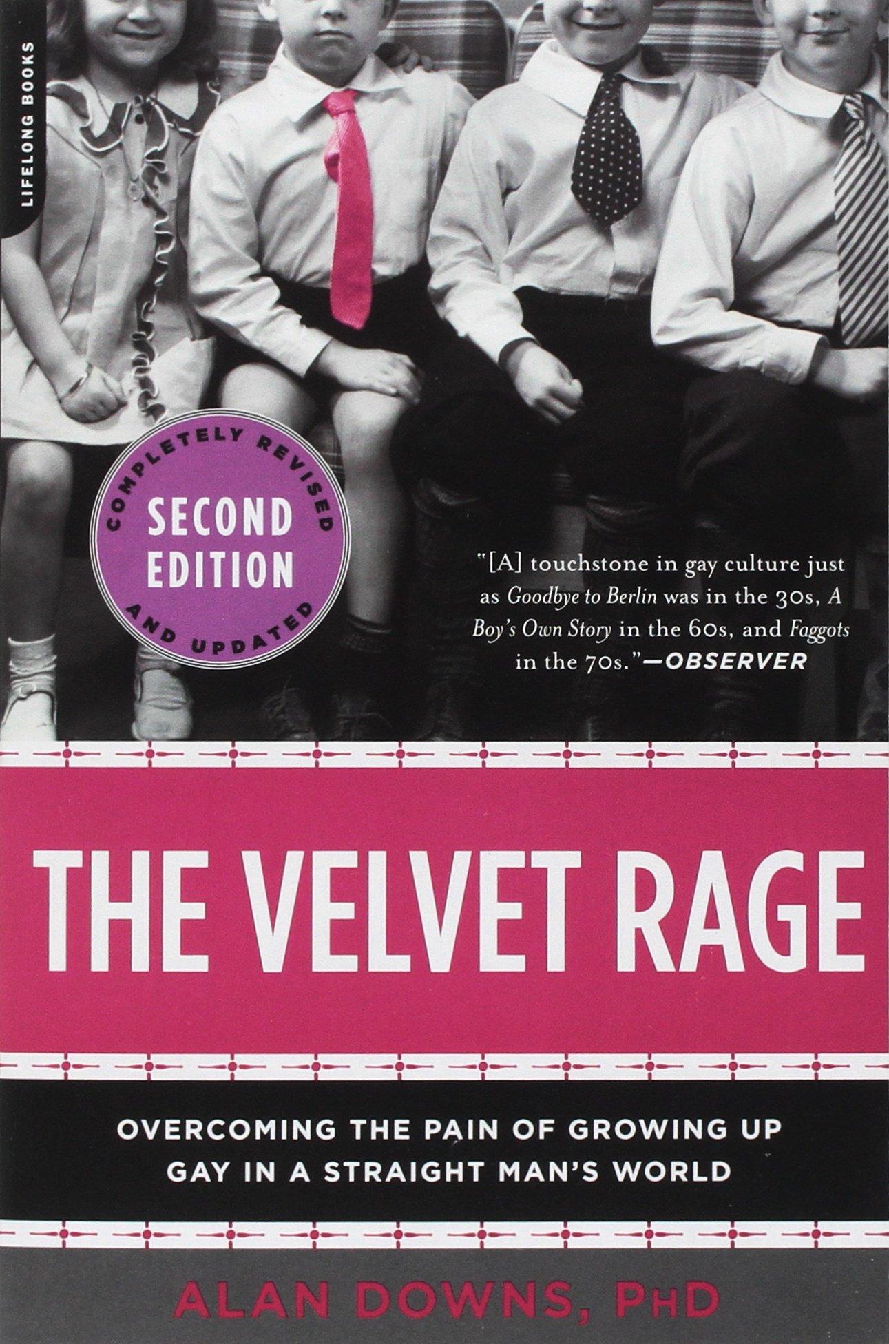 The Velvet Rage.jpg