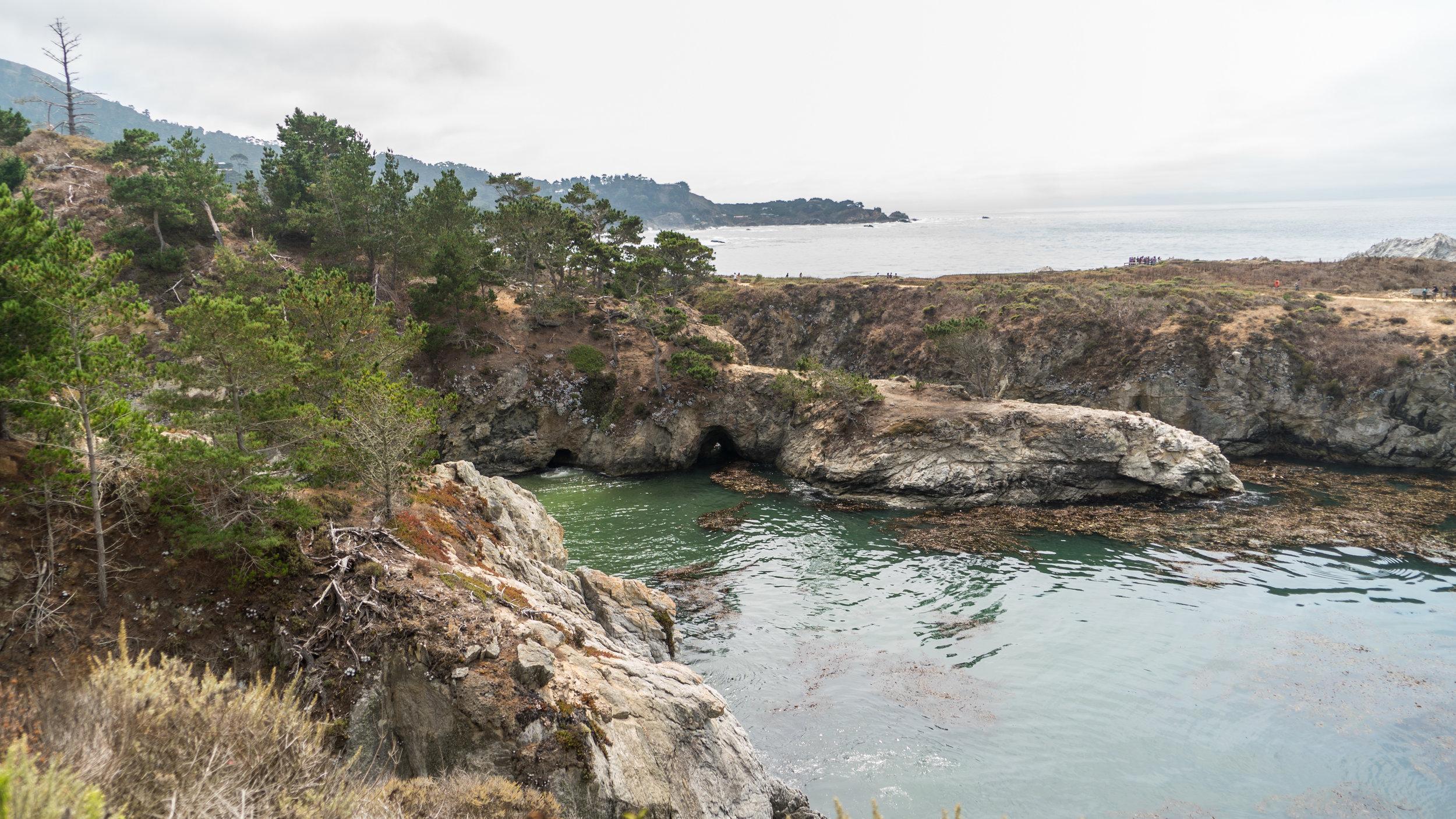 2017-09-09_IGSM_Monterey_Trip_DSC06858.jpg