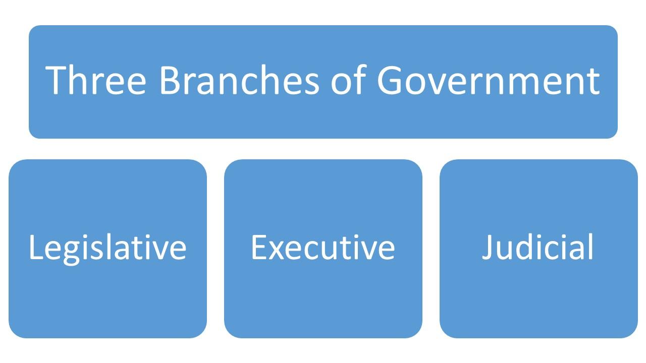 3 branches.jpg