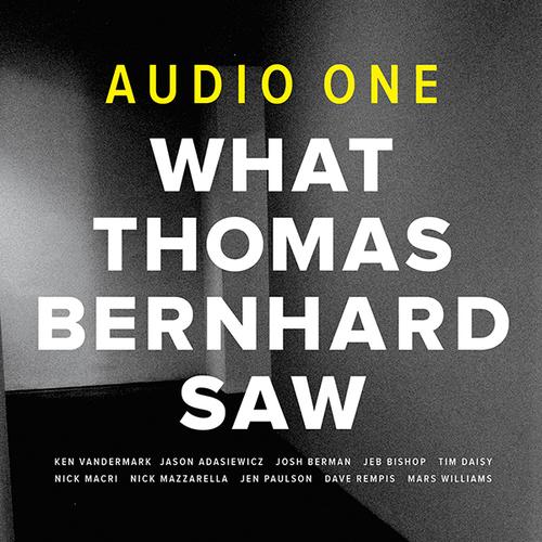 What Thomas Bernhard Saw