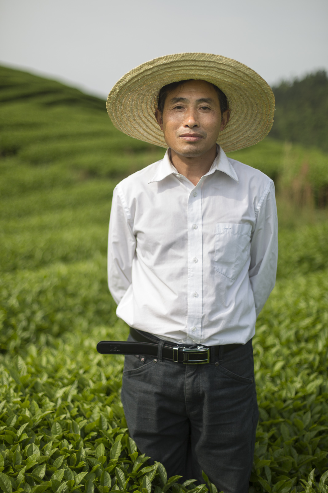 Fair Trade Tea farmer in Jiangxi, China