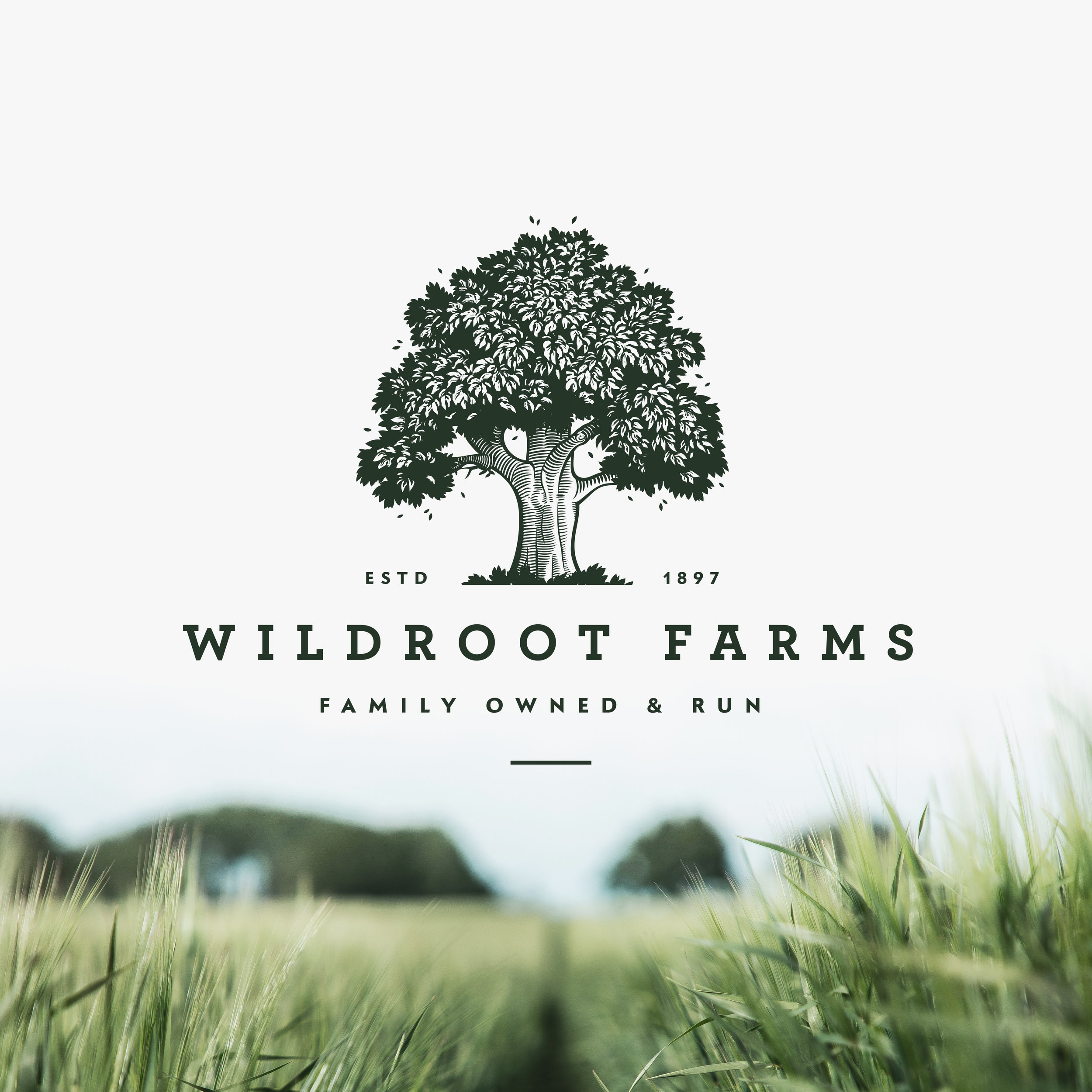 WILDROOT FARMS -  FARMING / AGRICULTURE BRAND PACKAGE