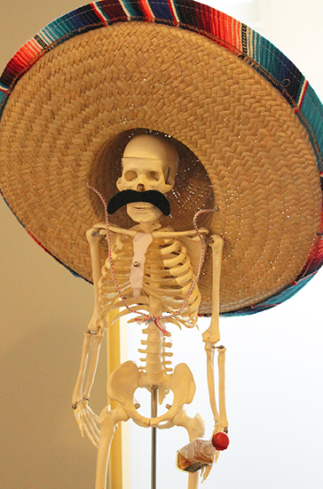 jose_skeleton