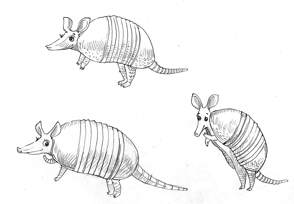 armadillo_housespecial_sketches1.jpg