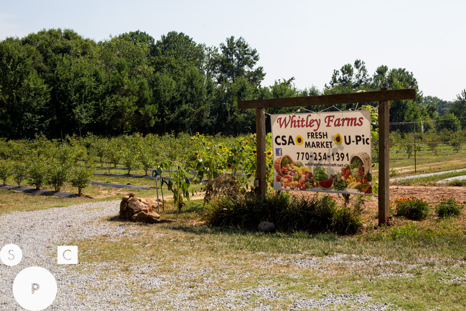 Whitley Farms Sharpsburg, GA ©Susan Crutchfield Photography