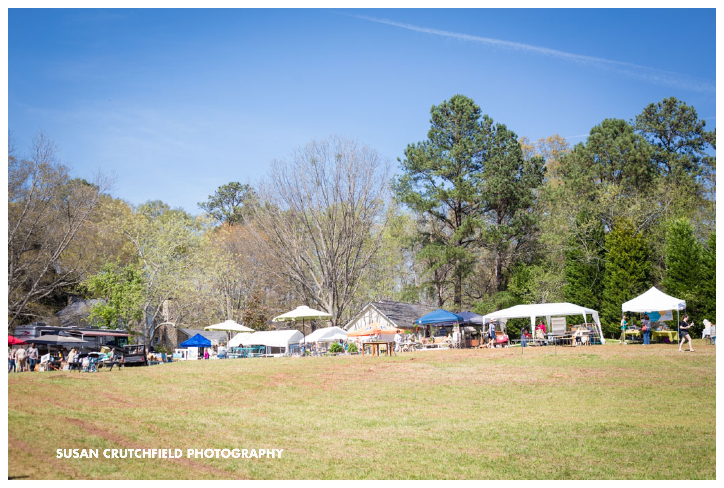 Newnan Pasture Sale Georgia