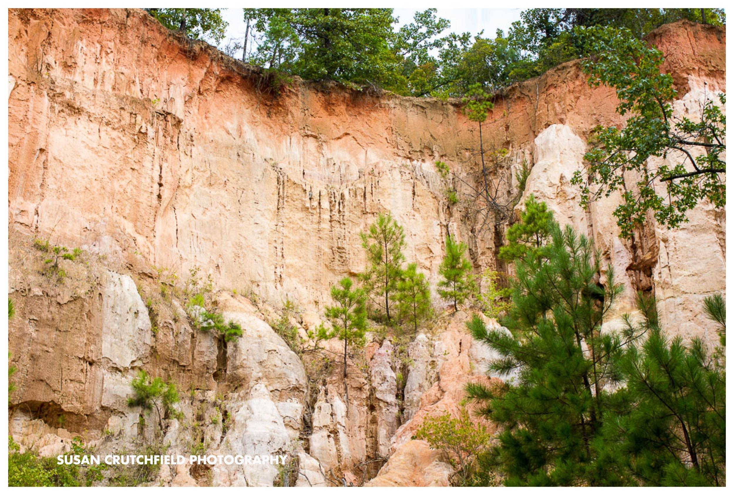Georgia Geology