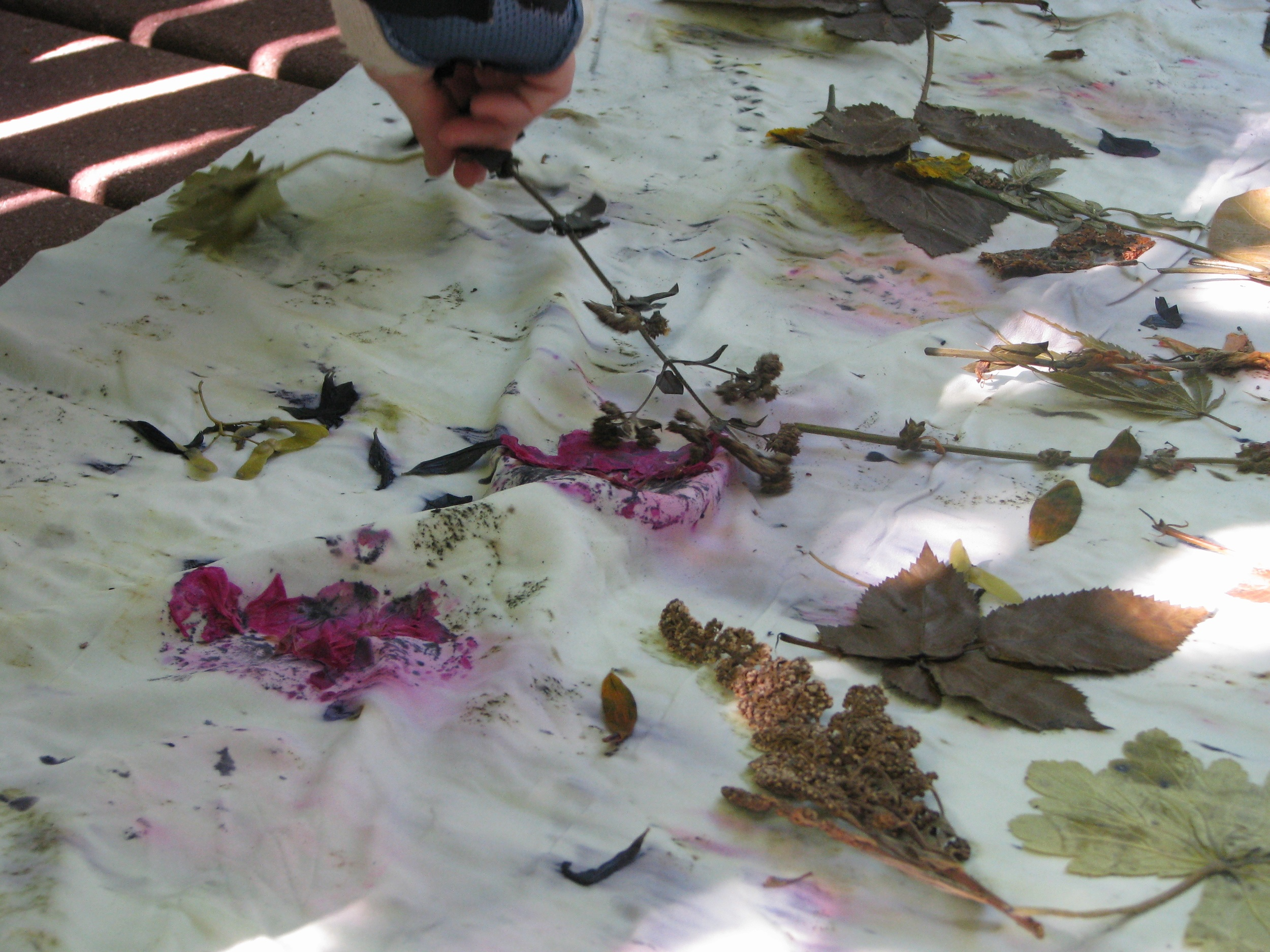 After steaming the leaves and flowers are peeled off to reveal prints below