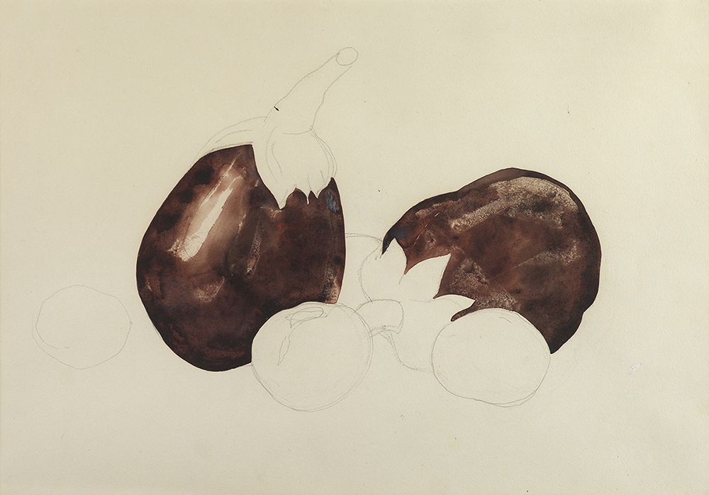 Drawing and watercolor of two eggplants