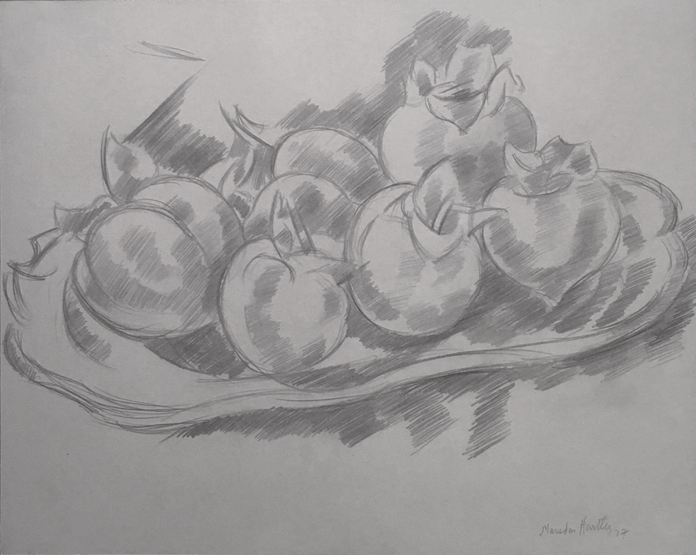 Pencil drawing of pomegranates