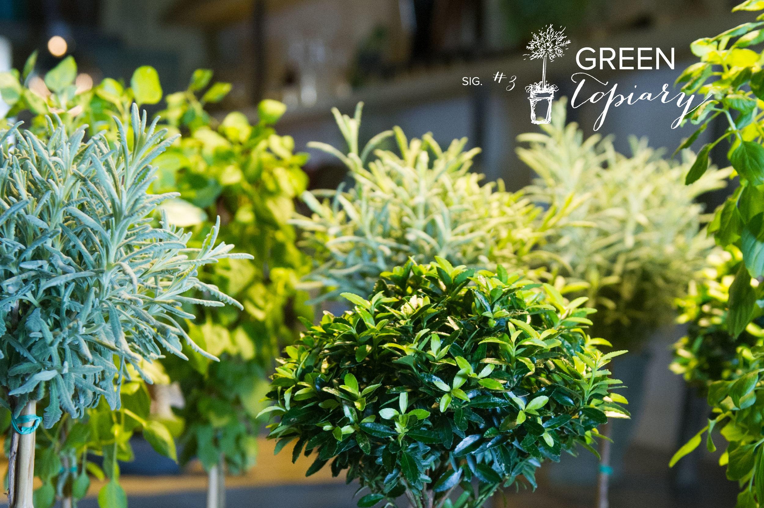 sig3_green-topiary.jpg