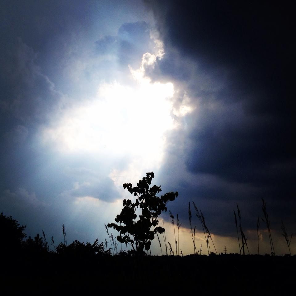 The sky 5 minutes before a storm. Taken at Devil's Hill in Cambridge.