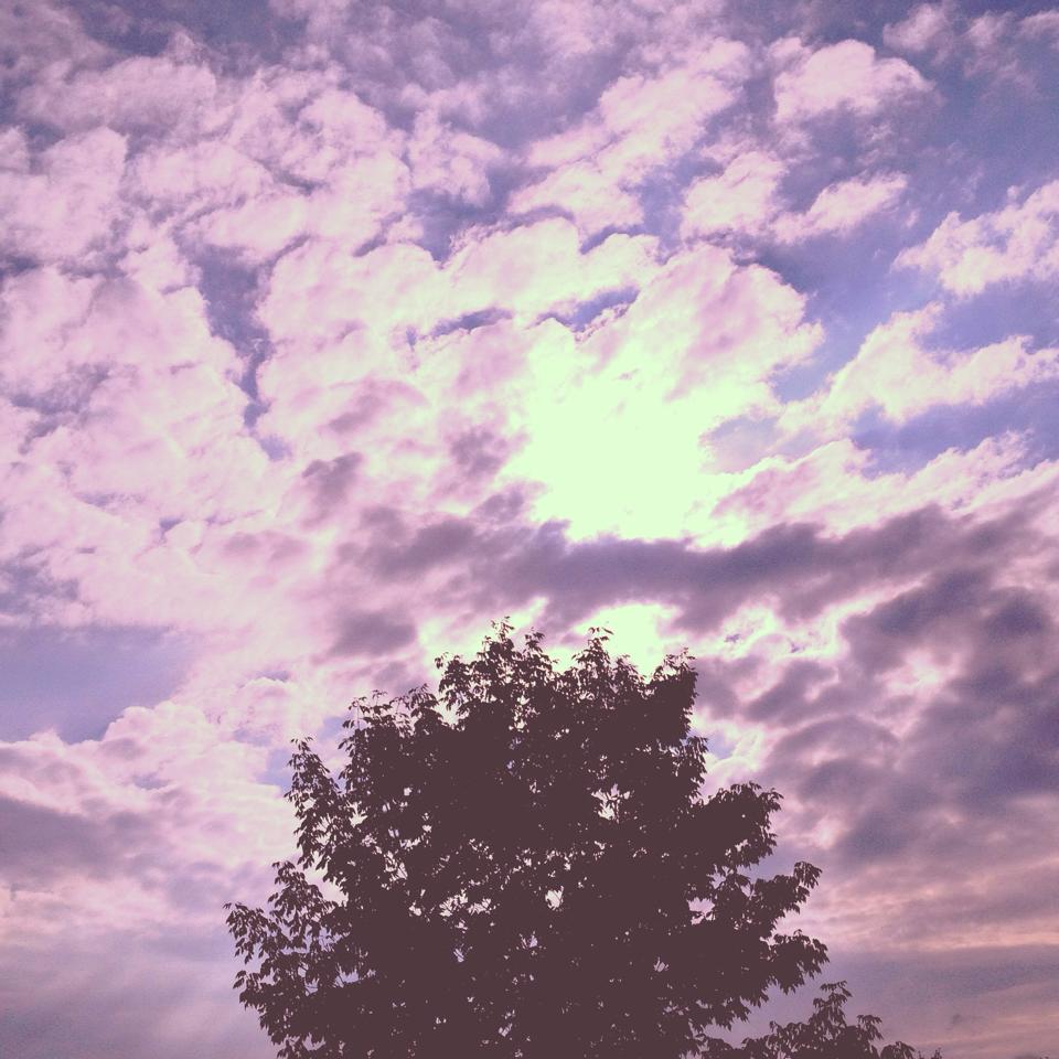 A glimpse of my heaven.