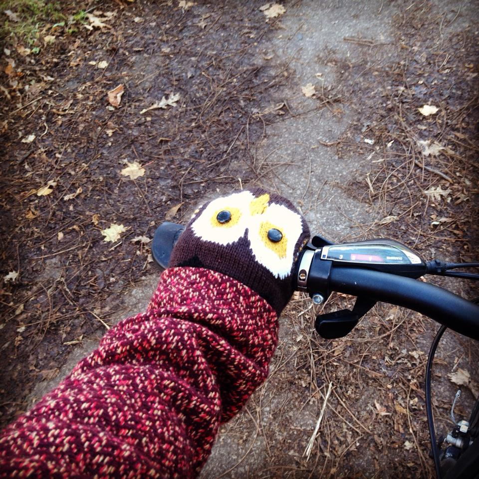 Owls make everything extrawonderful.