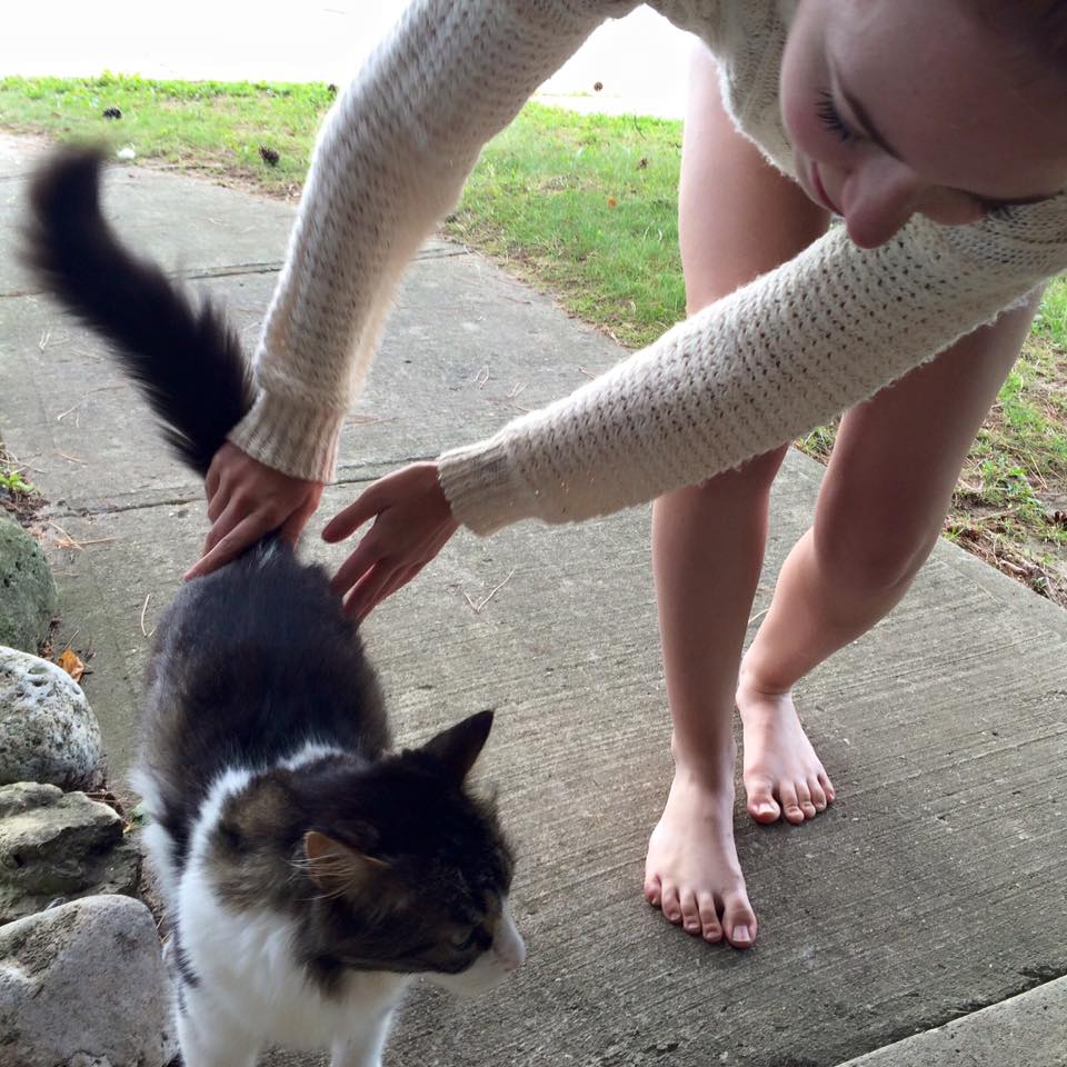 A random kitty saying goodbye to Paige