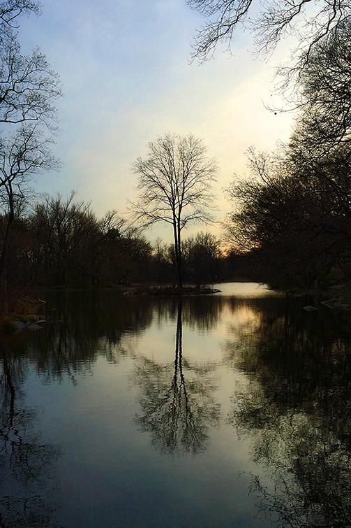 reflection_apr14_0050_sm2.jpg