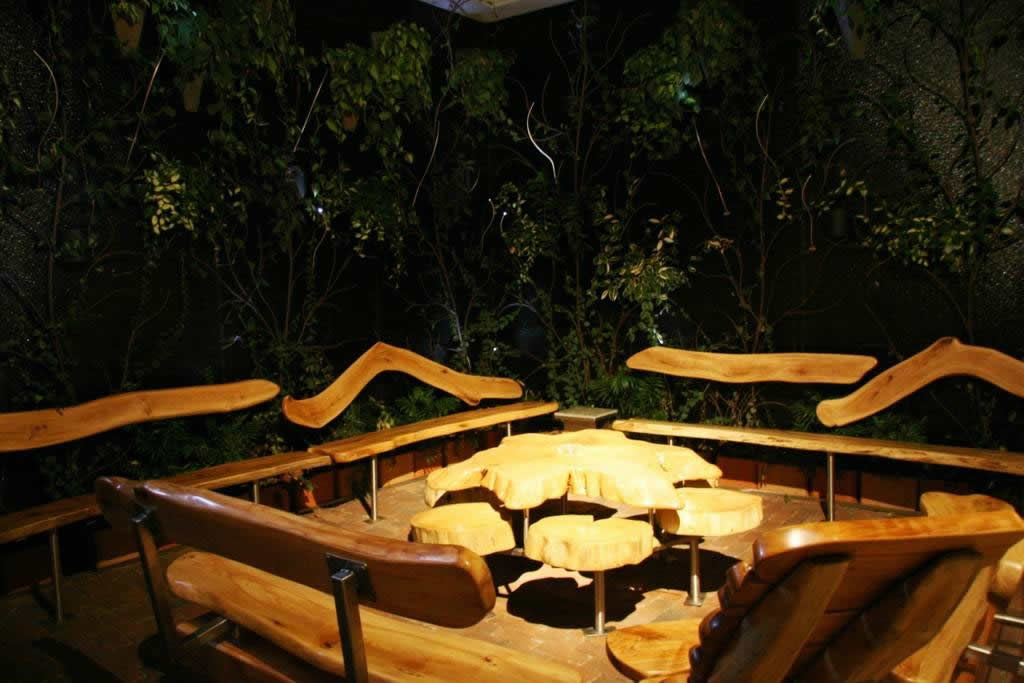 OUR LIVING ATRIUM WITH CUSTOM RESCUED WOOD BENCHES.