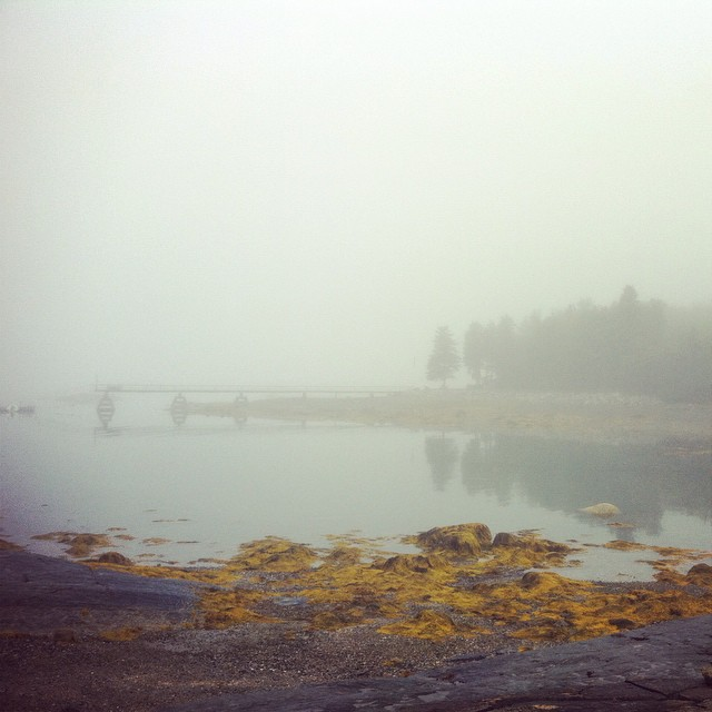 #brooklin #maine #fog #lowtide