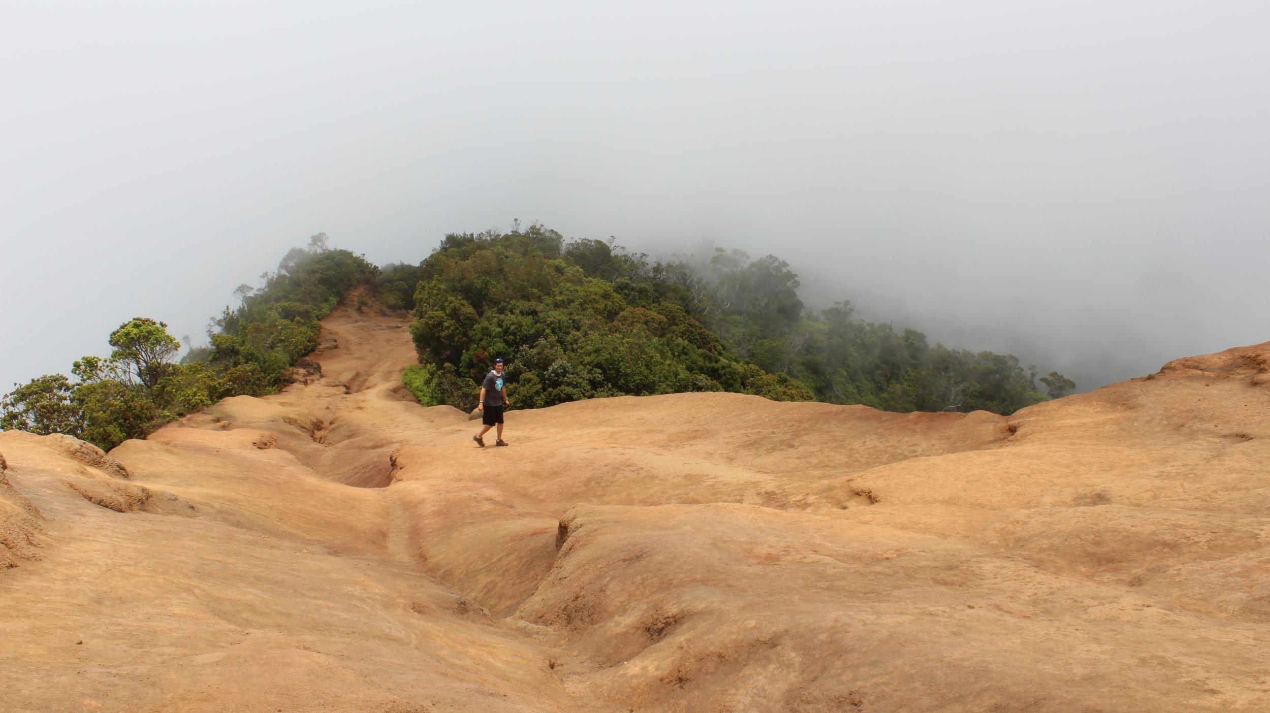 Waimea Canyon - Pu'u O Kila Lookout in Kauai, Hawaii // via Jitney's Journeys