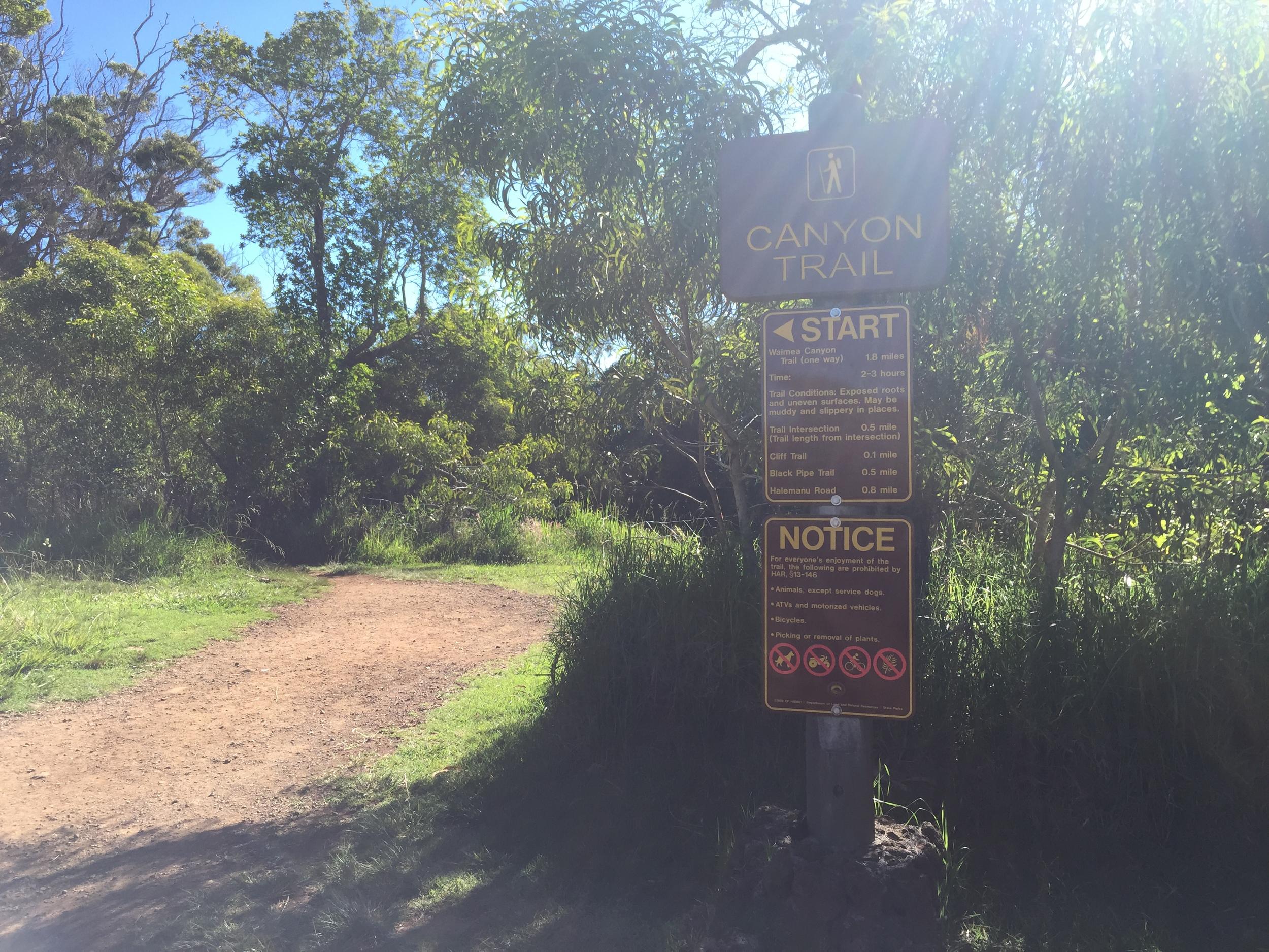 Canyon Trail - Hike Waimea Canyon in Kauai, Hawaii // via Jitney's Journeys