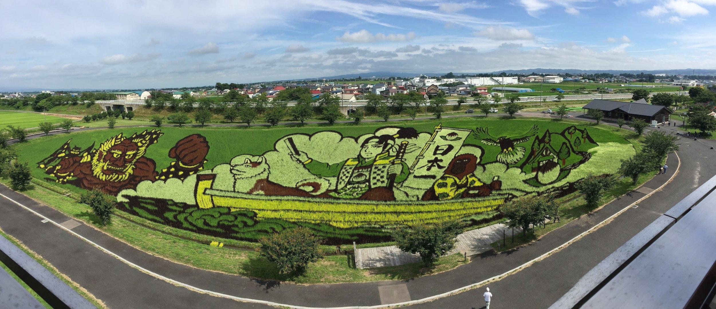 Rice Paddy Fields in Japan via Jitneys