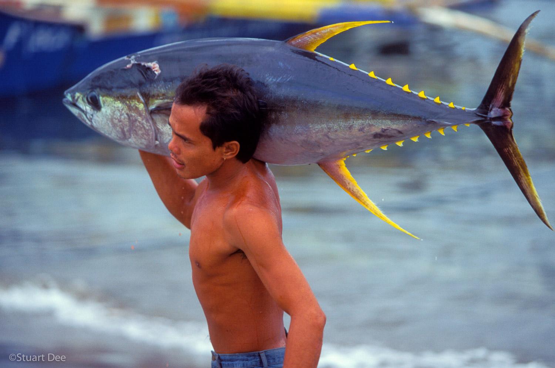 Tuna Landing, General Santos City, Philippines