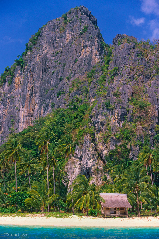 Lone nipa hut amid palm trees, in front of limestone cliff, on an island. Pinagbuyutan Island, El Nido, Palawan, Phiippines