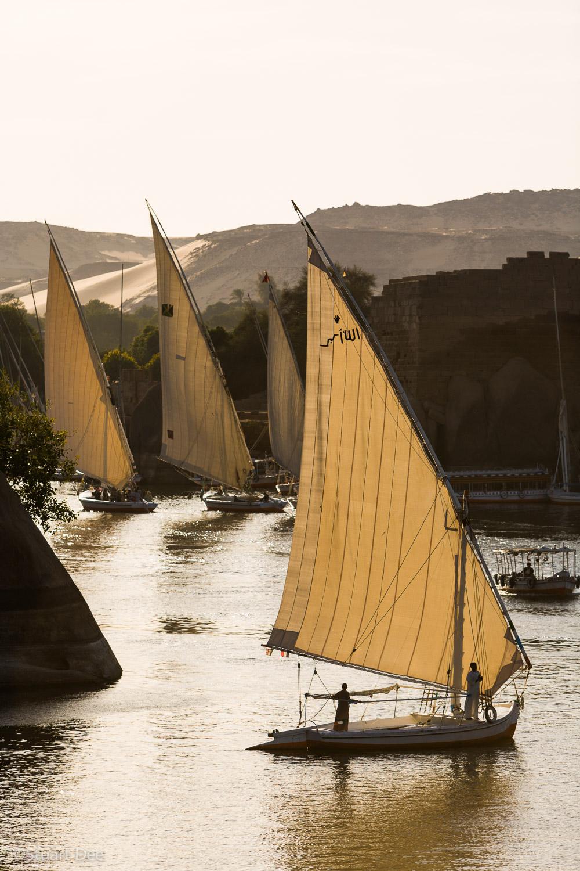 Feluccas, Nile River, near Aswan, Egypt