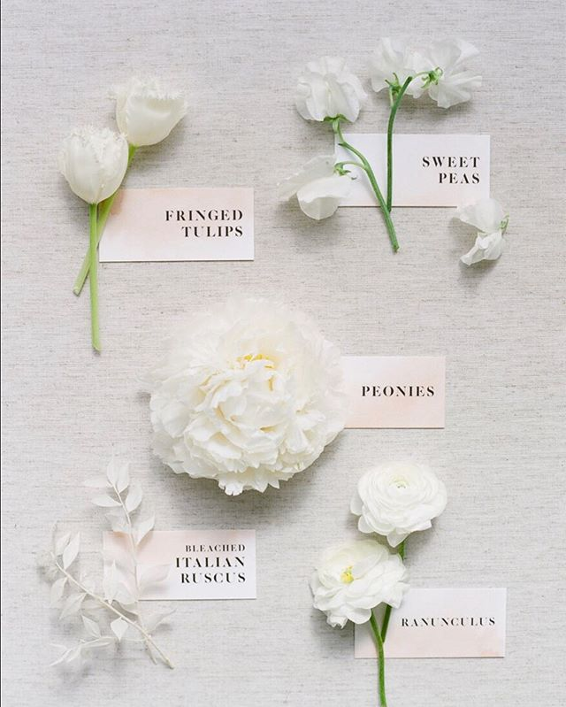 Elements || Sometimes it's nice to see all the elements that go into a bouquet  Photography by @Kevin chinphotog Paper Details by @underwoodletterpress Make up and Hair by @pmastyle.maria Styling and coordination by @creativeflowco