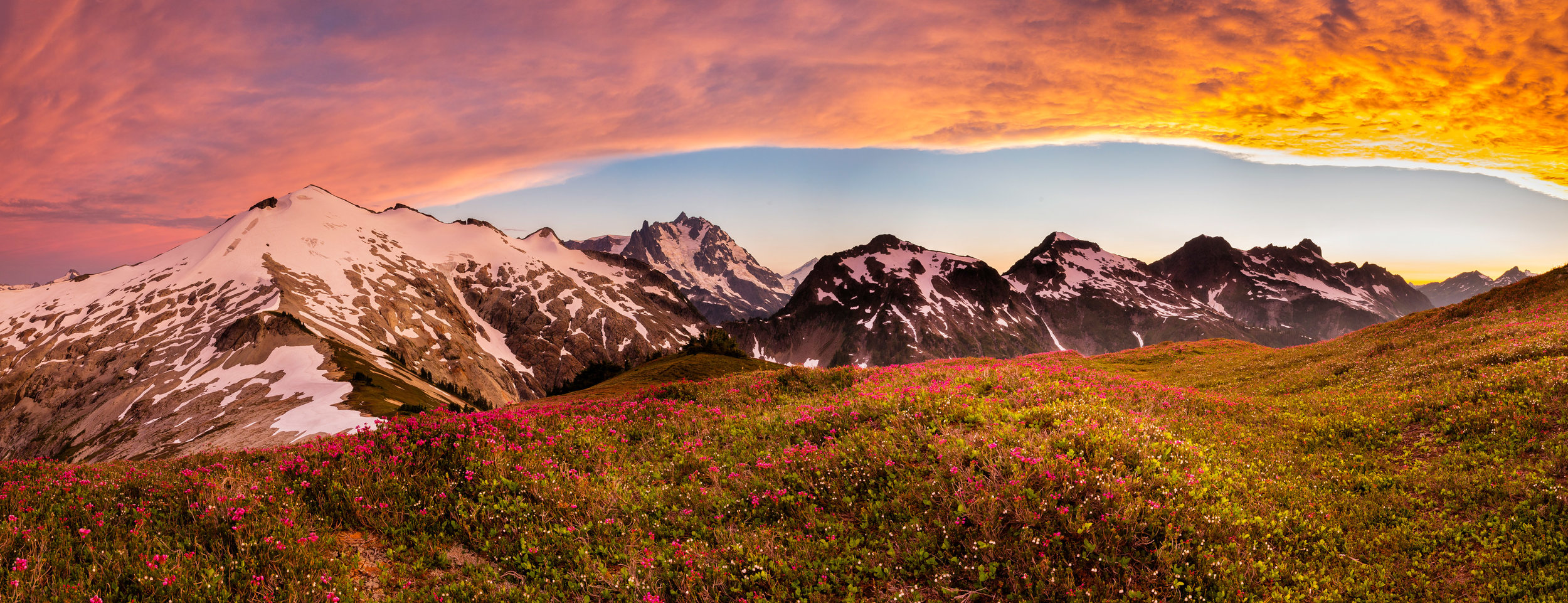 Landscape: Mt. Ruth, Mt. Shuksan and wild heather at sunset,  Mt. Baker Wilderness, Washington