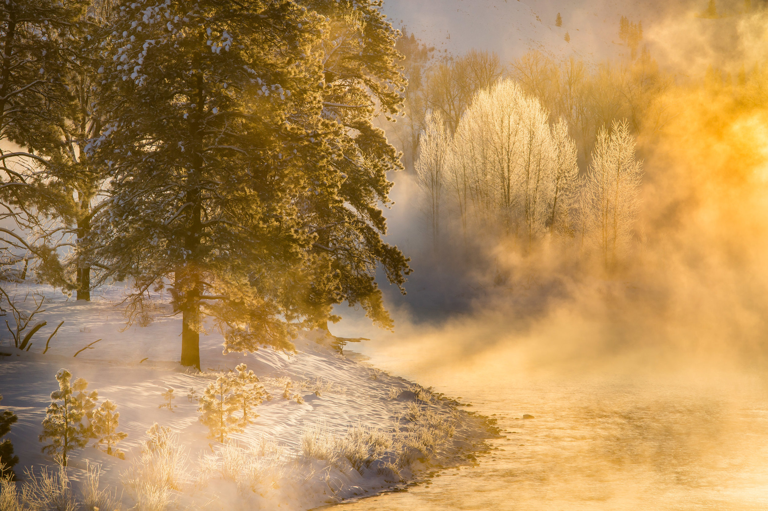 Landscape: Fog hovering above the Methow River at sunrise in winter, Methow Valley, Washington