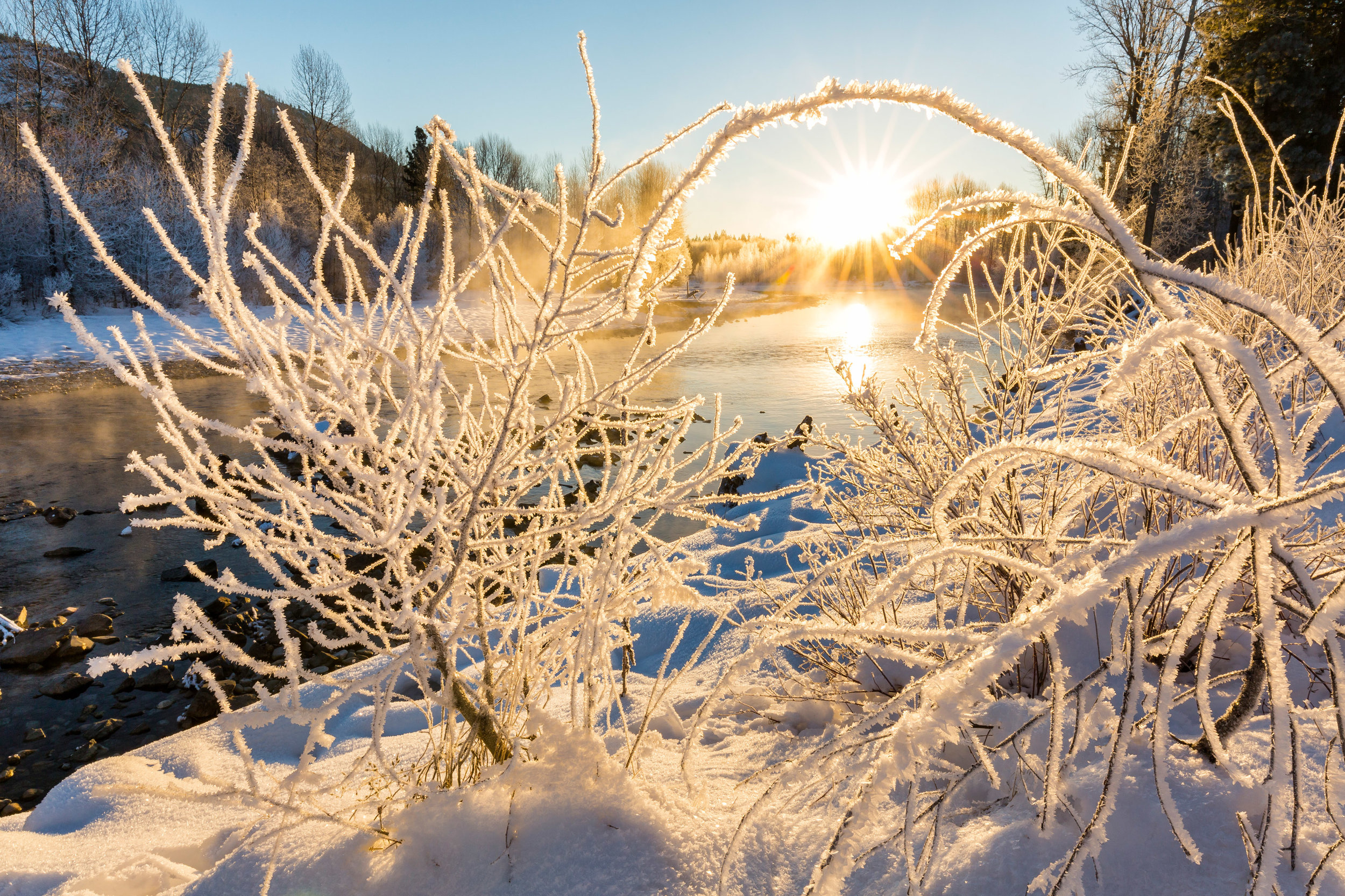 Landscape: Frost and fog along the Methow River at sunrise in late autumn, Methow Valley, Washington