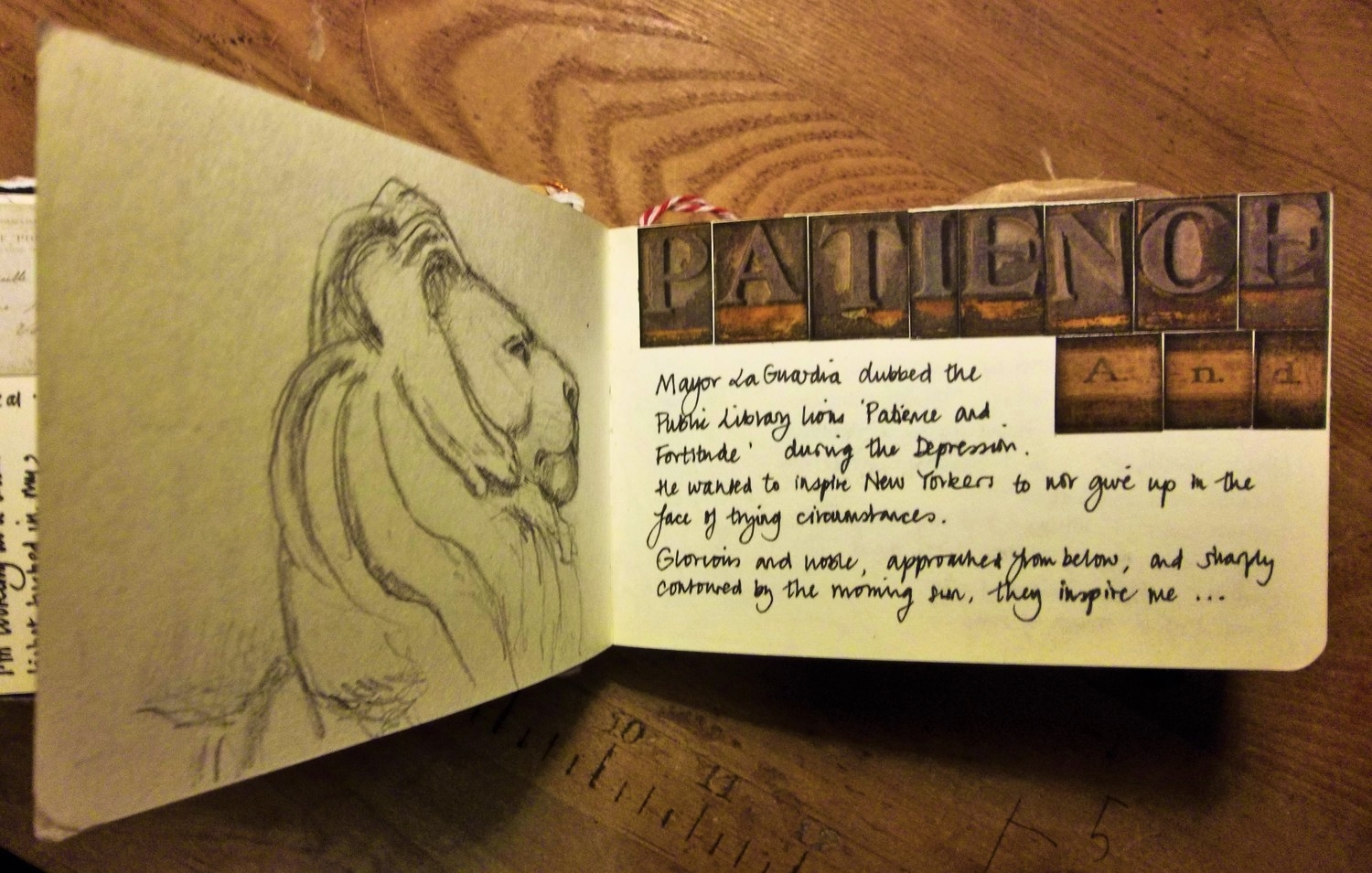 The New York Library Lion: Patience. Michelle Geffken. Paperblogging.com: Sketchingbooking you can do!