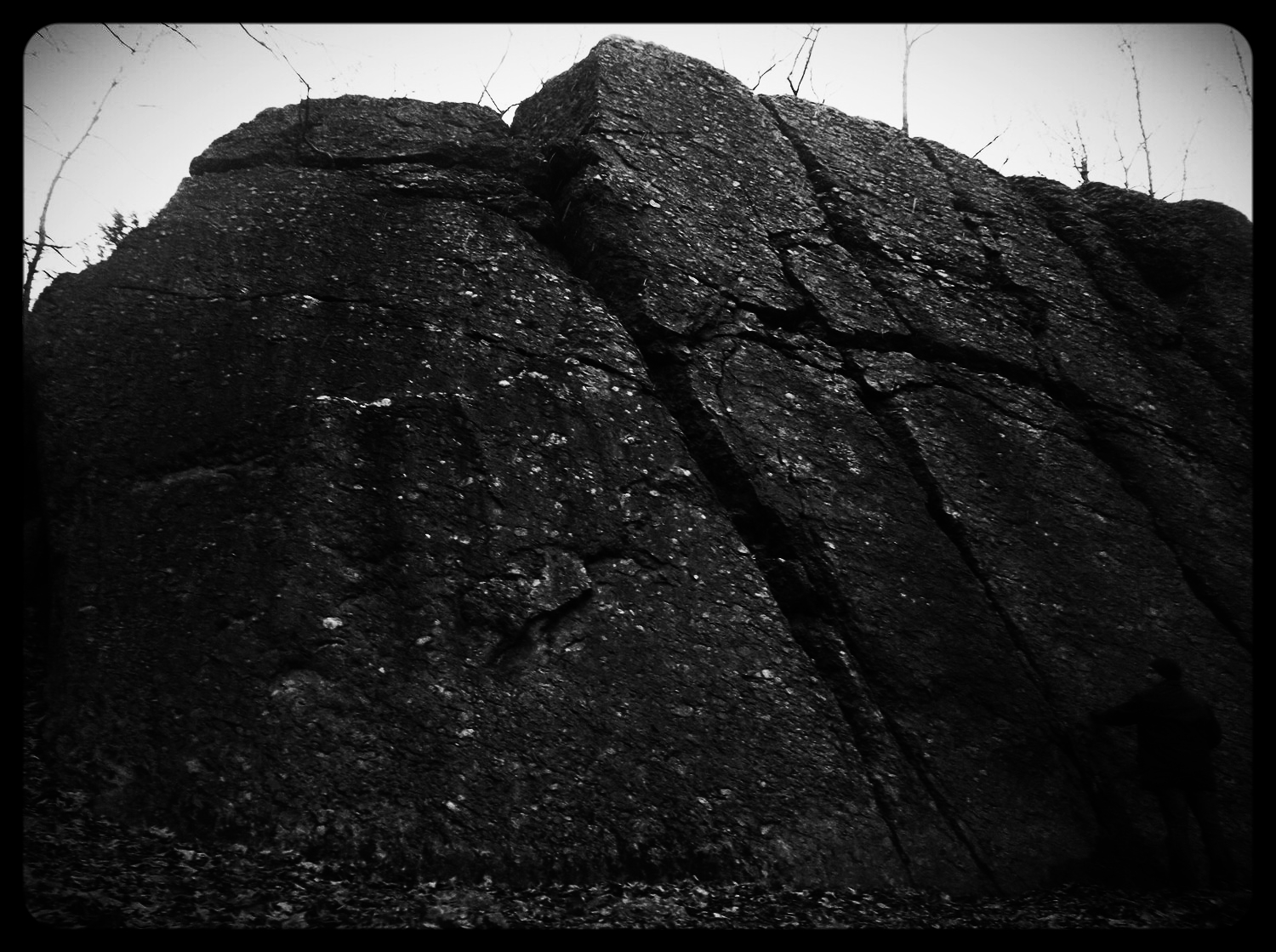 The tallest outcrop of Puddingstone in the area. Its face bears the marks of quarrying. Michelle Geffken, 2014