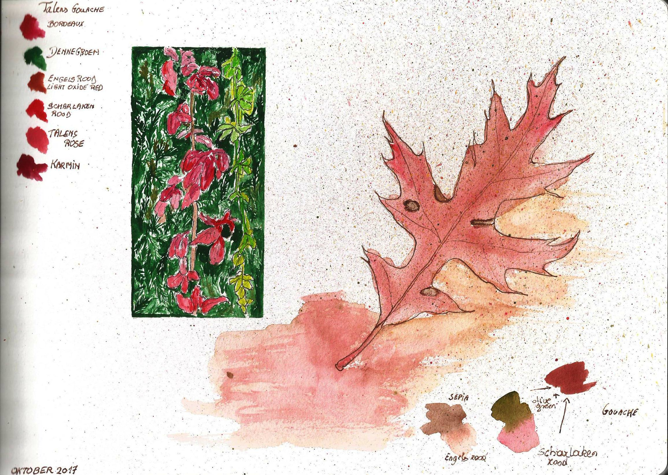 Herfstbladeren , leaf color study from the sketchbook of Debora Missoorten, 2017