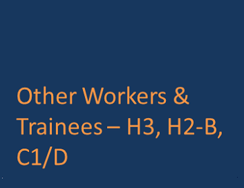 Other Workers & Trainees H-3 H2-B C1/D Visa.png