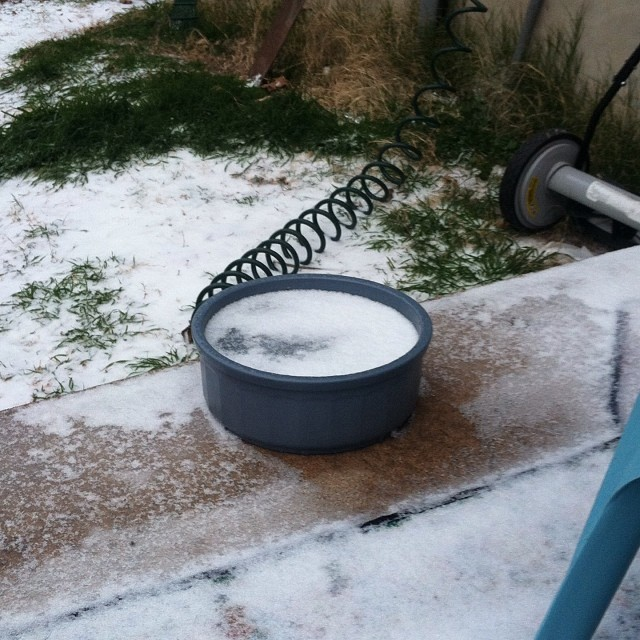 Brrrrrrrrr! Too cold! #icestorm #austintx –posted by karensinaustin on Instagram